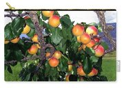 Ripe Apricots Carry-all Pouch by Will Borden