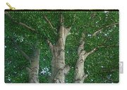 River Birches Carry-all Pouch