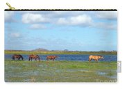 River Horses Horizon Carry-all Pouch