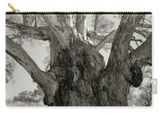 River Red Gum Carry-all Pouch