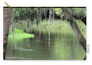 River Scenic Carry-all Pouch
