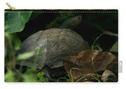 River Turtle 2 Carry-all Pouch