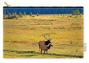 Rmnp Plains In Autumn Carry-all Pouch