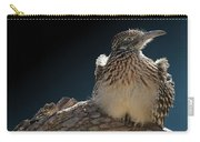 Roadrunner On A Log Carry-all Pouch