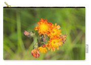 Roadside Wildflower Carry-all Pouch