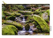 Roaring Fork 2 Carry-all Pouch