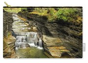 Robert H. Treman State Park Gorge Falls  Carry-all Pouch
