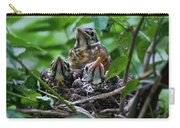 Robin Chicks In Nest. Carry-all Pouch