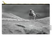 Robin In Black And White Carry-all Pouch