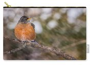 Robin In Winter Carry-all Pouch