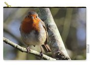 Robin On Branch Donegal Carry-all Pouch