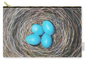Robin's Eggs Carry-all Pouch