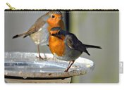 Robins Carry-all Pouch