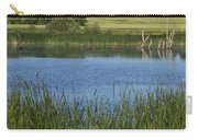 Rochester Wildlife Pond 1 Carry-all Pouch