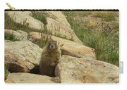 Rock Critter Carry-all Pouch
