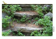 Rock Stairs Carry-all Pouch