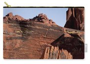 Rock Texture And Lichen Carry-all Pouch