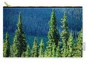 Rocky Mountain Skyline Carry-all Pouch