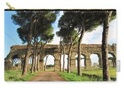 Roman Aqueducts Carry-all Pouch