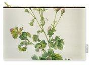 Rosa Centifolia Bipinnata Carry-all Pouch