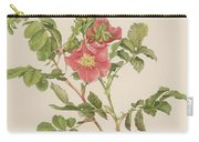 Rosa Cinnamomea The Cinnamon Rose Carry-all Pouch