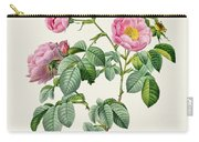 Rosa Mollissima Carry-all Pouch by Claude Antoine Thory