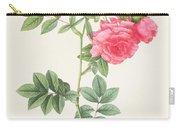 Rosa Pimpinellifolia Flore Variegato  Carry-all Pouch by Pierre Joseph Redoute