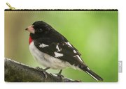 Rose-breasted Grosbeak Male Perched New Jersey  Carry-all Pouch