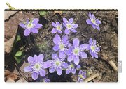Rose Lake Beauties Carry-all Pouch
