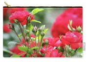 Roses Nature Spring Scene Carry-all Pouch