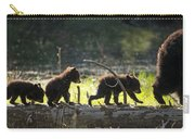 Rosie And Cubs Carry-all Pouch