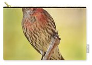 Rosy Finch Macro Carry-all Pouch