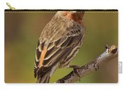Rosy Finch Posing I Carry-all Pouch