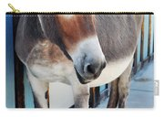 Route 66 Burro Oatman  Carry-all Pouch