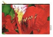 Royal Poinciana Carry-all Pouch