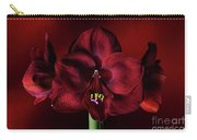 Ruby Red Amaryllis Carry-all Pouch