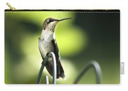 Ruby-throated Hummingbird Carry-all Pouch by Christina Rollo