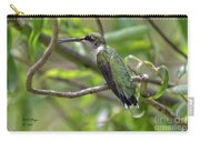 Ruby-throated Hummingbird - Female Carry-all Pouch