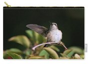 Ruby-throated Hummingbird - Juvenile Carry-all Pouch