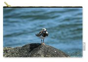 Ruddy Turnstone 2 Carry-all Pouch