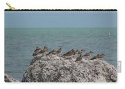 Ruddy Turnstones On A Rock Carry-all Pouch