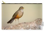 Rufous-bellied Thrush Turdus Carry-all Pouch