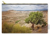 Rugged West Carry-all Pouch