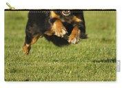 Run Dog Run Carry-all Pouch