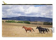Running Into The Wind Carry-all Pouch