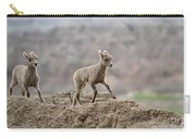 Running Wind Through The Badlands Carry-all Pouch