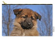 Sable German Shepherd Puppy II Carry-all Pouch by Sandy Keeton
