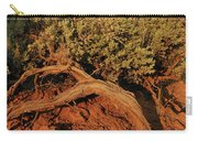 Sagebrush At Sunset Carry-all Pouch