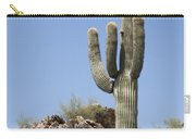 Saguaro 3 Carry-all Pouch
