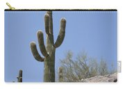 Saguaro 6 Carry-all Pouch